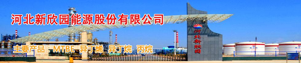 河北新欣園能源股份有限公司